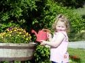 Rebekka gießkanne 1